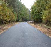 Przebudowa drogi leśnej w leśnictwie Budomierz